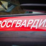 В Барнауле росгвардейцы задержали студента, который за час угнал два автомобиля
