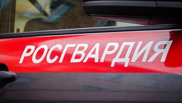 Нарядом Росгвардии в Свердловской области задержан подозреваемый в угоне иномарки