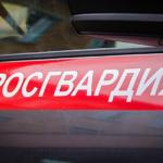 В Суворове сотрудники Росгвардии задержали подозреваемых в угоне автомобиля