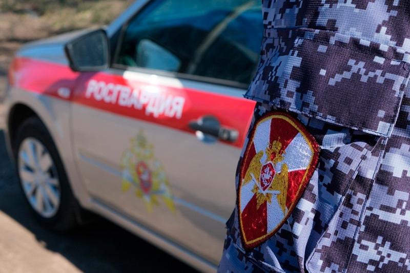 В Апатитах сотрудники Росгвардии задержали мужчину, пытавшегося угнать автомобиль