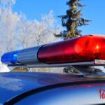 На Южном Урале сотрудники Росгвардии задержали подозреваемых в угоне автомобиля